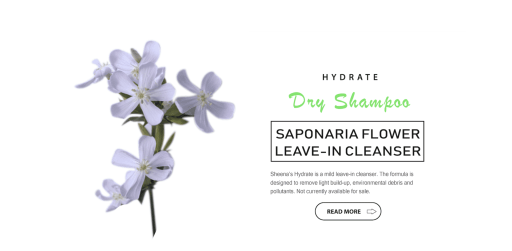 Hydrate - Saponaria flower leave-in cleanser | Sheenas Hair Care